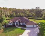 17401 Mary Charlotte Place, Lutz image