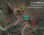 Lot 37 Twin Branches Road, Blowing Rock image