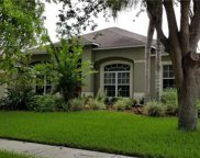 306 Carriage Oak Place, Seffner image