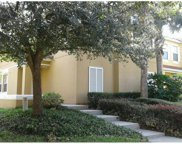 3138 Yellow Lantana Lane, Kissimmee image
