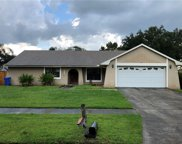 16601 Mandy Lane, Tampa image