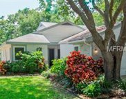 297 Ixora Drive Unit 297, Palm Harbor image