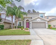 10424 Summer Azure Drive, Riverview image
