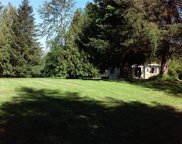 31401 Schudy Rd S, Roy image