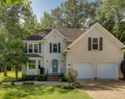 224 Forrester Creek Way, Greenville image