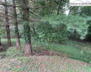Lot 18 Buttercup  Court, Boone image