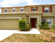 13506 Red Ear Court, Riverview image