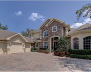 1247 Playmoor Drive, Palm Harbor image