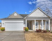 5070  Blossom Point Drive, Indian Land image