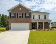 211 Rolling Woods Ct., Little River image