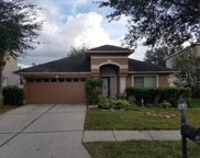 18207 Sandy Pointe Drive, Tampa image