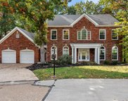 404 Bluff Meadow  Drive, Ellisville image