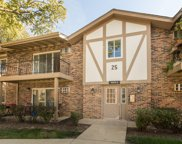 9S070 Frontage Road Unit #208, Willowbrook image