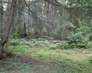 0 Green Cliffs Rd, Anacortes image