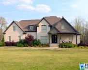 236 Cove Ct, Helena image