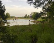 Lot 5 Lake Mellie Jane Ln, Leakesville image