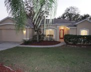 676 Meadow Park Drive, Minneola image
