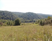 Tract 3 Spruce Pine Road, Rogersville image