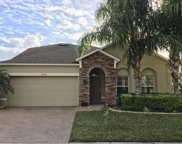 10942 High Bush Court, Orlando image