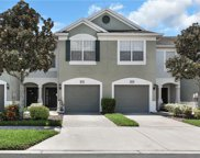 10139 Pink Palmata Court, Riverview image