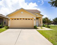8574 Deer Chase Drive, Riverview image