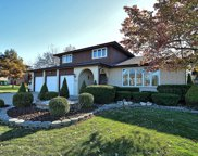 13235 West Stonewood Drive, Homer Glen image