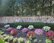221 Spring  Drive Unit #221, East Meadow image