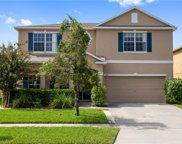 1143 Willow Branch Drive, Orlando image