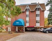 801 N Pennsylvania Street Unit 100, Denver image