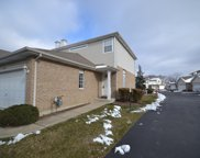 5243 West Mint Julip Drive, Alsip image