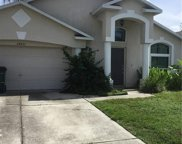 24821 Wild Frontier Drive, Land O Lakes image