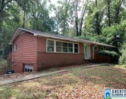 1769 Murray Hill Rd, Homewood image