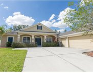 11737 Newberry Grove Loop, Riverview image