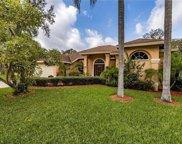 10427 Nightengale Drive, Riverview image