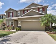 10904 Subtle Trail Drive, Riverview image