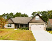 445 Madison Creek Court, Lyman image