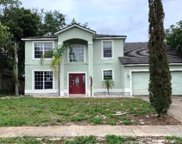 555 Elmcrest Place, Debary image