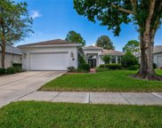 8009 Pine Hollow Drive, Mount Dora image