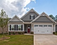 10284 Black Locust  Lane Unit #227, Charlotte image