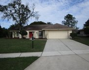18313 Sturbridge Court, Tampa image