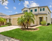 11055 Golden Silence Drive, Riverview image