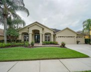 8319 Golden Prairie Drive, Tampa image