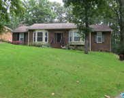 1202 Willow Oak Ct, Hoover image