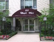 201 South Maple Avenue Unit 403, Oak Park image