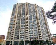 3930 North Pine Grove Avenue Unit 3105, Chicago image