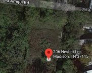 206 Nesbitt Ln, Madison image