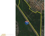 155 Acres Willow Ln And Bridges Rd, Mcdonough image