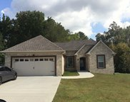 209 Morgan Trace Ct, White House image