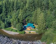 51425 SE Enumclaw-Chinook Pass Rd, Greenwater image