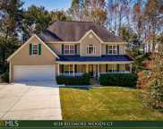 4118 Biltmore Woods Ct, Buford image
